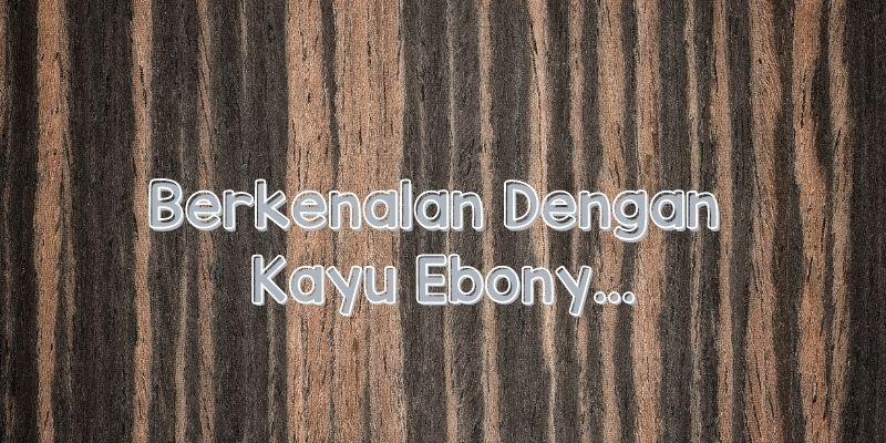 Wujud dan Karakteristik Kayu Ebony