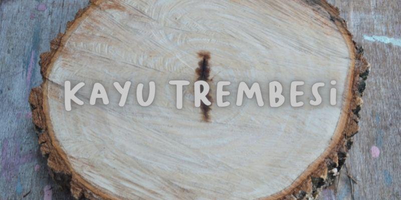 kayu trembesi