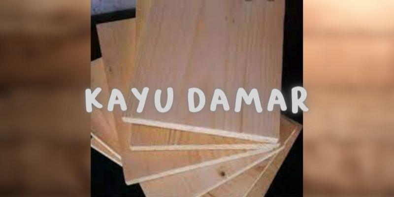 kayu damar
