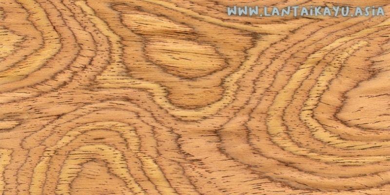 karakteristik kayu kelapa