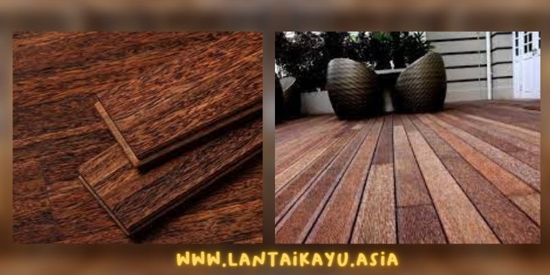 manfaat kayu kelapa