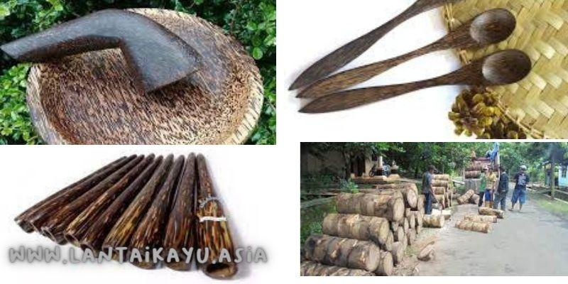 manfaat kayu aren