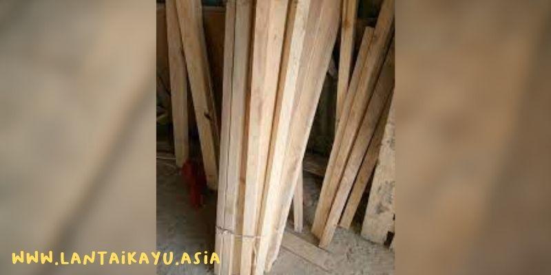 fakta kayu albasia