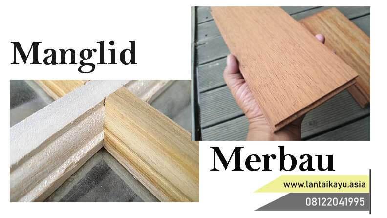 kayu Manglid vs kayu merbau