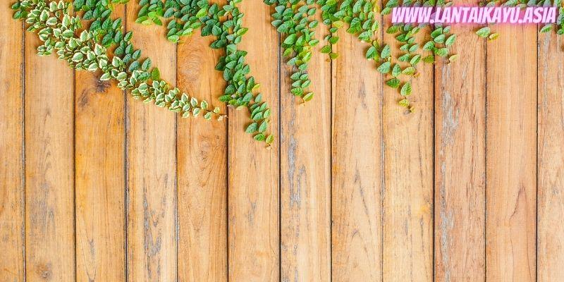 10 Model Pagar Kayu Minimalis Untuk Rumah - kombinasi pagar kayu dengan tanaman